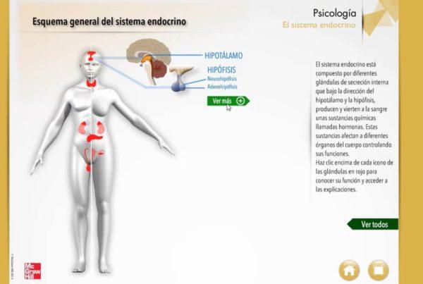 Píldoras educativas interactivas para McGraw Hill